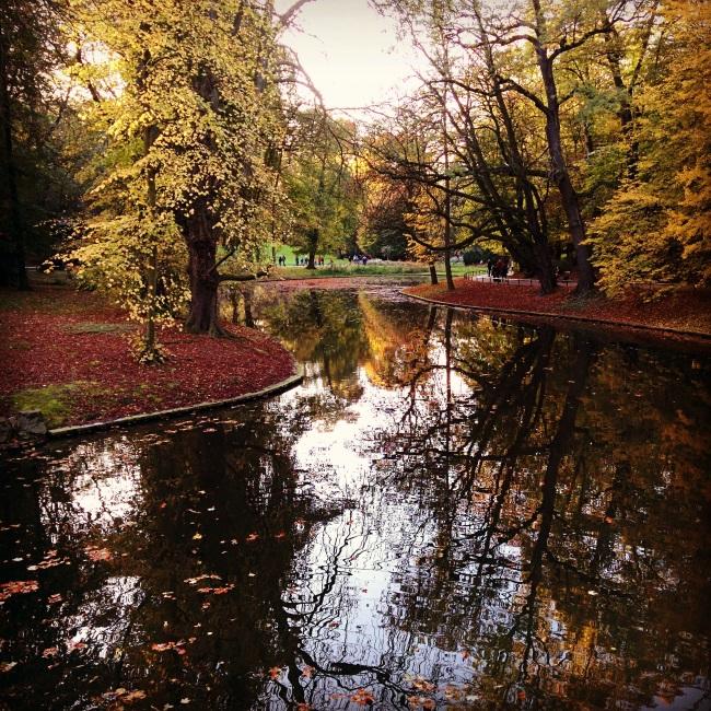Efterårspark1